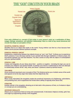 """The """"GOD"""" Circuits in Your Brain"""